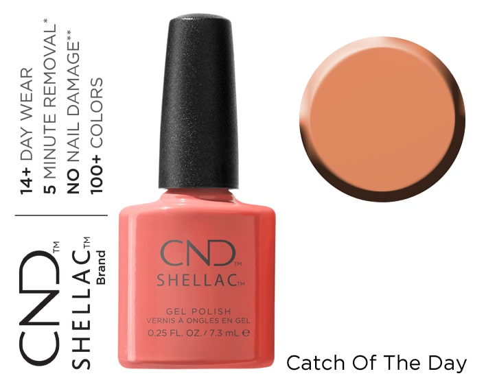 SHELLAC CATCH OF THE DAY 7.3ML